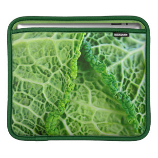 Closeup of green cabbage leaves iPad sleeve