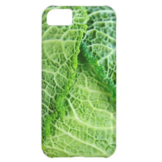 Closeup of green cabbage leaves iPhone 5C cover