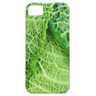 Closeup of green cabbage leaves iPhone SE/5/5s case