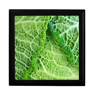 Closeup of green cabbage leaves jewelry box