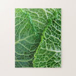 Closeup of green cabbage leaves puzzles