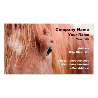 Closeup of Horse Double-Sided Standard Business Cards (Pack Of 100)