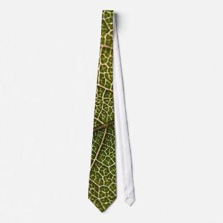 Closeup of leaf's underside tie