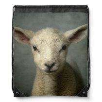 Closeup of new born lamb with grey background. drawstring bag
