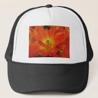 Closeup of orange tulips in spring trucker hat