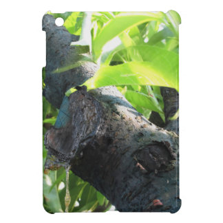 Closeup of peach tree excretion of gummy resin case for the iPad mini