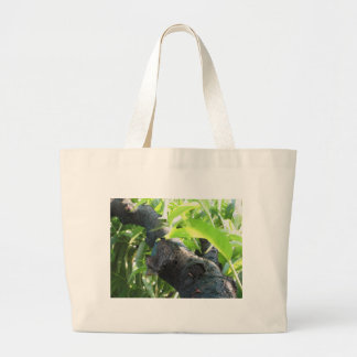 Closeup of peach tree excretion of gummy resin large tote bag