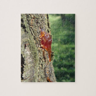 Closeup of pear tree excretion of gummy resin jigsaw puzzle