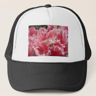 Closeup of pink streaked tulips in spring trucker hat