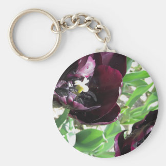 Closeup of purple tulips with droplets in spring keychain