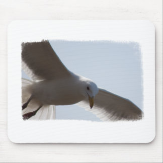 Closeup of seagull flying mouse pad