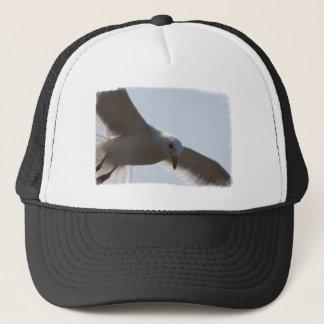 Closeup of seagull flying trucker hat