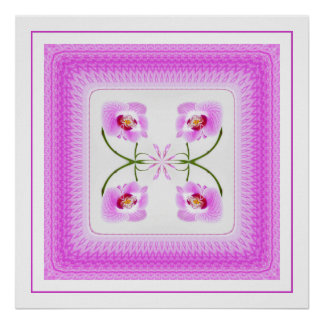 closeup, orchid, white, pink, purple, photograph, poster