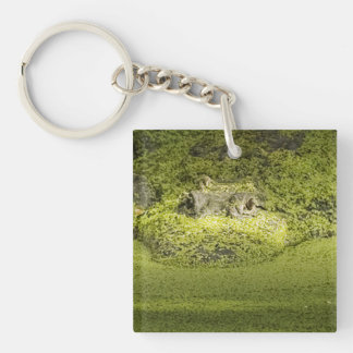 Closeup Photograph of a Gator in Duckweed Keychain
