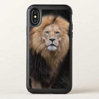 Closeup Portrait of a Male Lion Speck iPhone X Case