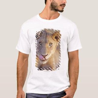Closeup portrait of a young male lion lying T-Shirt