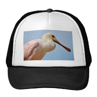 Closeup Roseate Spoonbill Trucker Hat