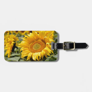 Closeup sunflower tag for bags