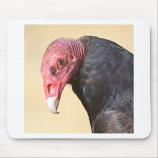 Closeup turkey vulture mouse pad