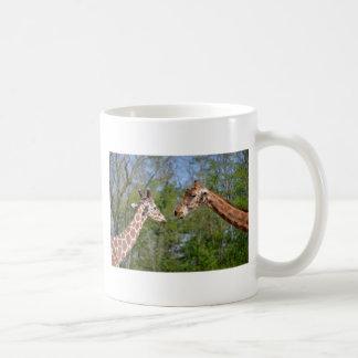 Closeup two giraffes coffee mug