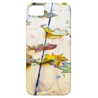 Closeup view on a wet green and yellow leaves iPhone SE/5/5s case