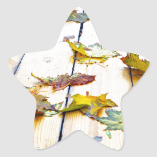 Closeup view on a wet green and yellow leaves star sticker