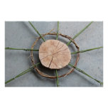Closeup Wood Bamboo and Vine Sculpture Photography Poster