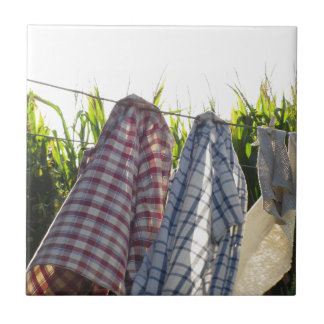 Clothes are hanging on clothesline tile