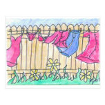 Clothesline Post Card
