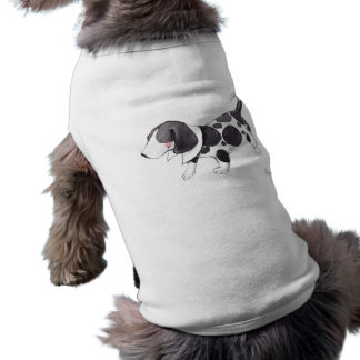 clothing for dogs
