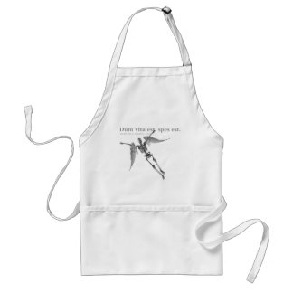 Clothing for teenagers and adults with Latin quote Aprons