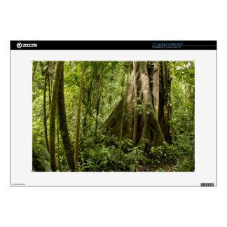 "Cloud forest, Bosque de Paz, Costa Rica 15"" Laptop Skin"