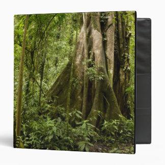 Cloud forest, Bosque de Paz, Costa Rica 3 Ring Binder