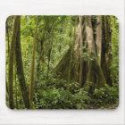 Cloud forest, Bosque de Paz, Costa Rica Mouse Pad