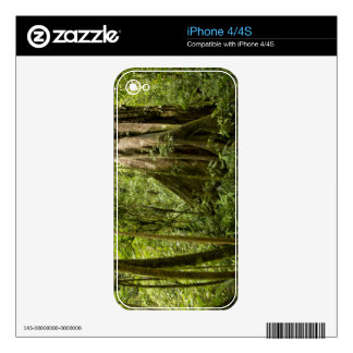Cloud forest, Bosque de Paz, Costa Rica Decal For The iPhone 4