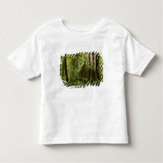 Cloud forest, Bosque de Paz, Costa Rica Toddler T-shirt