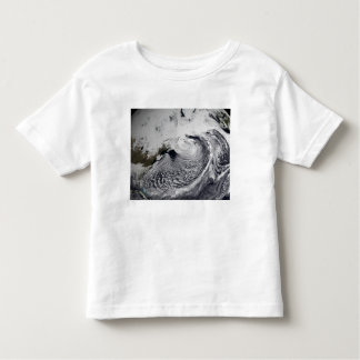 Cloud simulation of a single day 3 toddler t-shirt