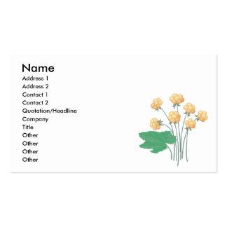 cloudberries business card