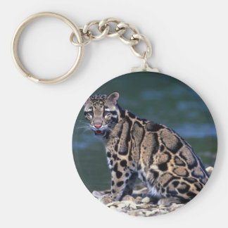 Clouded Leopard-eye contact Keychain