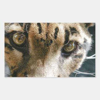 Clouded Leopard Rectangular Sticker