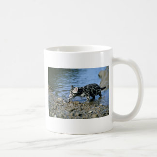 Clouded Leopard-small cub walking thru water Coffee Mug