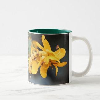 Cloudless Sulphur Butterflies Mug