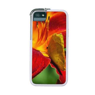 Cloudless Sulphur Phoebis Sennae iPhone 5/5S Cover