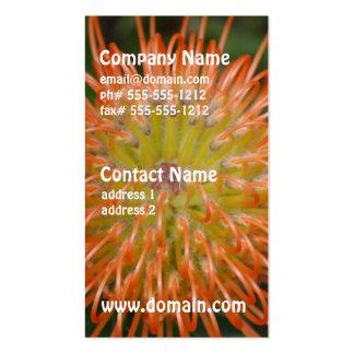 Cloudpants Pincushion Business Card Templates