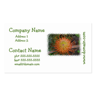 Cloudpants Pincushion Business Cards