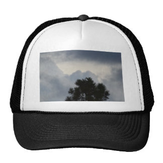 CLOUDS and PINE Trucker Hat