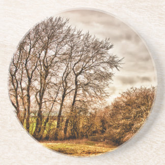 Clouds in Autumn HDR landscape Coasters