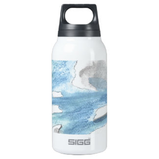Cloudy landscape insulated water bottle