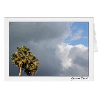 Cloudy Palms Card