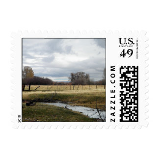 Cloudy Skies over Back Creek Pasture Postage Stamp